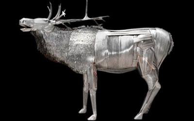 Metal Elk